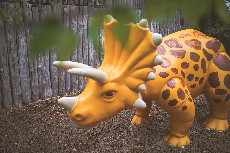 Playmobil FunPark - Dinoswelt 15
